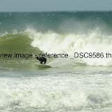 _DSC9586.thumb.jpg