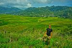 Spider Rice Fields, Flores