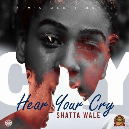 Shatta Wale – Hear Your Cry -brytgh.com