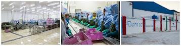 شركة دمسا لتصبير الأسماك بالعيون DAMSA : توظيف 100 منصب معالجة و تصبير الاسماك بدون دبلوم بمدينة بولمان Fabbrica-Damsa