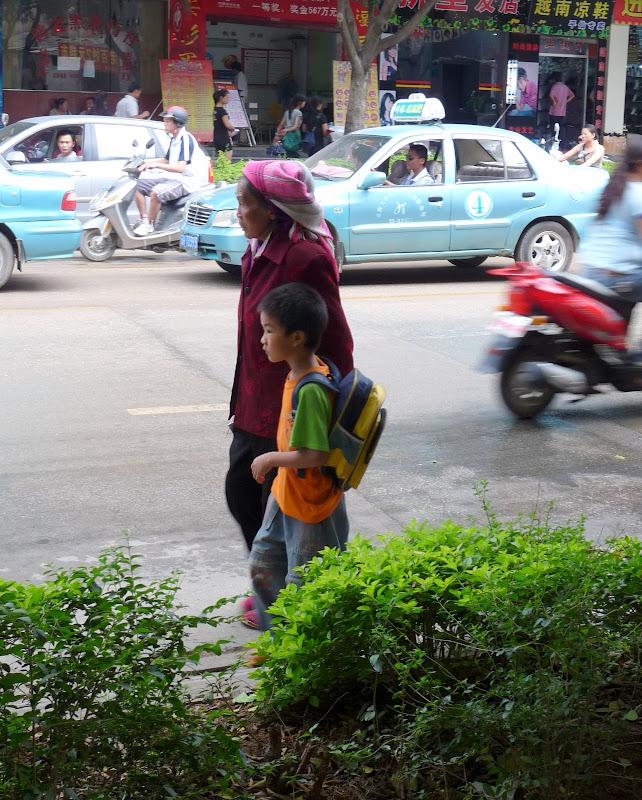 Chine.Yunnan Wen shan et BA MEI 1 - P1260822.JPG