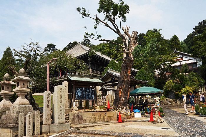 Nara23.jpg
