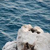 croatia - IMAGE_F0AB4C8B-E378-4937-9854-84D50487F00B.JPG