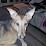 Moe Bigsley's profile photo