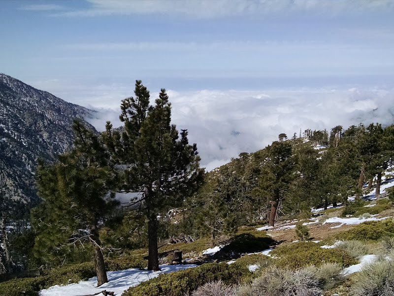 Thunder Mountain, Telegraph Peak, and Timber Mountain • San Antonio Canyon