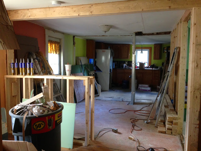 Renovation Project - IMG_0108.JPG