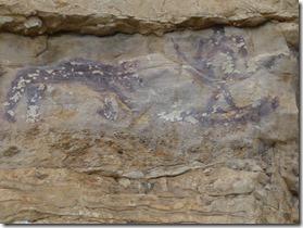peintures rupestres rive gauche  Léna 1