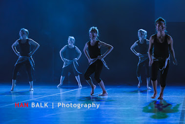 Han Balk Voorster Dansdag 2016-3659.jpg
