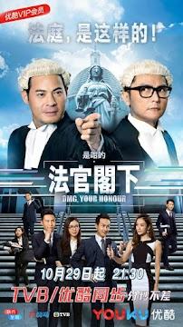 Thưa Ngài Thẩm Phán (SCTV9)