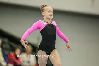 Han Balk Fantastic Gymnastics 2015-2113-2.jpg