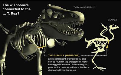 Mungkinkah Dinosaurus bisa dibangkitkan kembali?