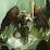 Dragon Seer's profile photo