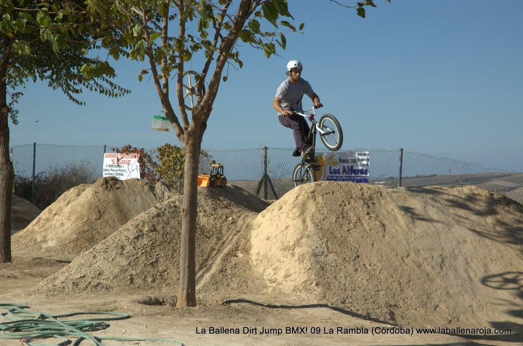 Ballena Dirt Jump BMX 2009 - BMX_09_0056.jpg