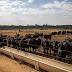 Ipea aumenta previsão de alta do PIB do setor agropecuário