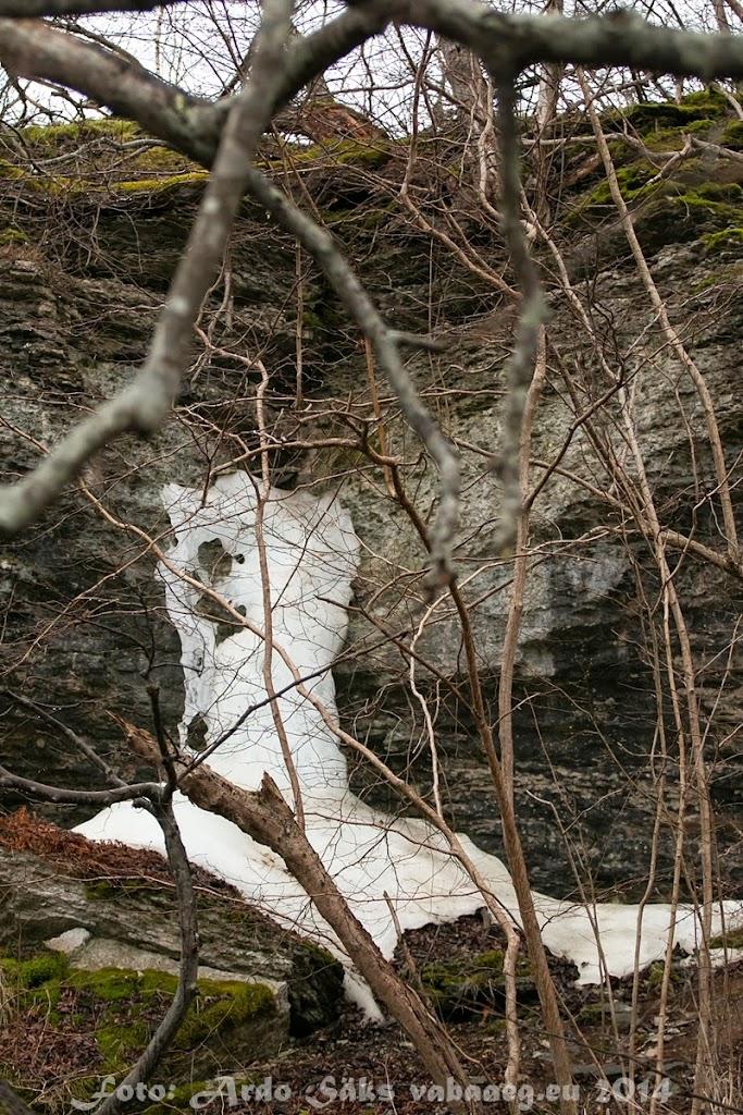 2014.04.13 Paldiski Elamusretk - AS20140413PALDISKI_078S.JPG