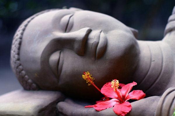chia sẻ nếp sống Phật pháp - người áo lam