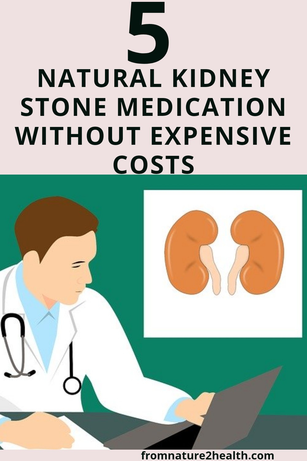 5 Natural Kidney Stone Medication Without Expensive Costs, asparagus, celery, lemon, lime, water