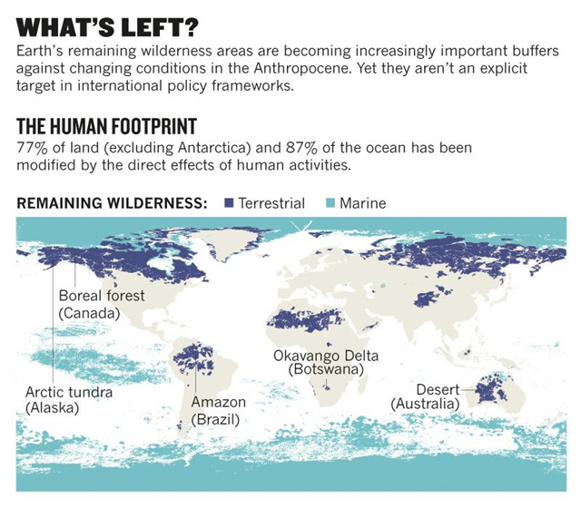 Map of remaining wilderness areas in 2018. 77 percent of land and 87 percent of the ocean has been modified by the direct effects of human activities. Graphic: Watson, et al., 2018 / Nature