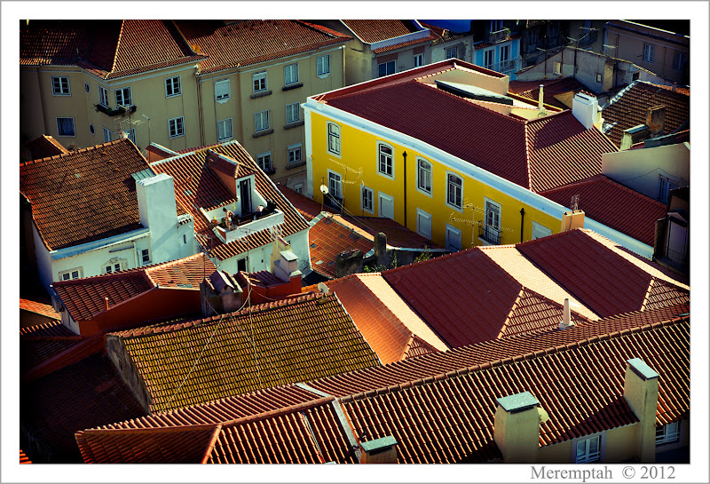 Telhados Toits Lisbonne Lisboa