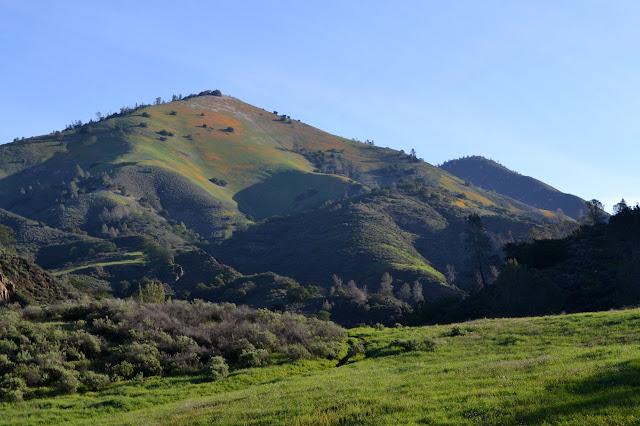 Grass Mountain in orange splotches