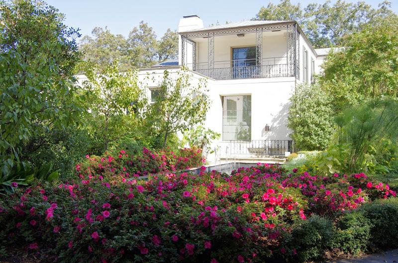 10-26-14 Dallas Arboretum - _IGP4285.JPG