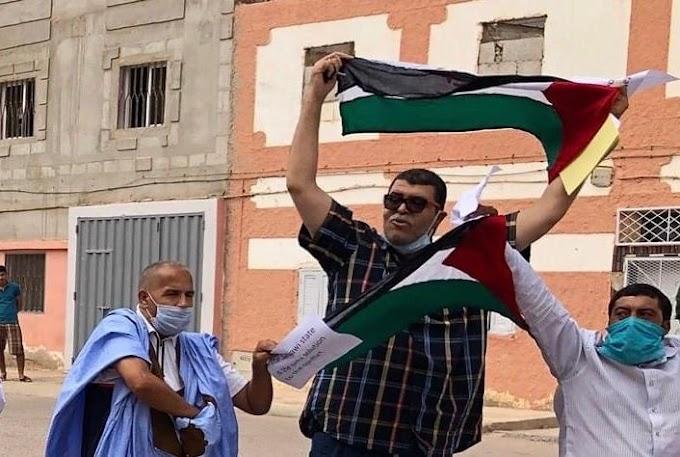 Freedom House: Siria y el Sáhara Occidental son los peores lugares del mundo en materia de derechos políticos y libertades civiles.
