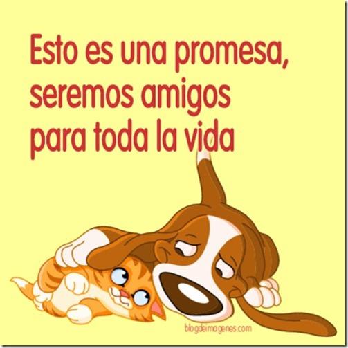 esto es una promesa, seremos amigos para toda la vida