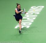 Agnieszka Radwanska - 2015 WTA Finals -DSC_3846.jpg