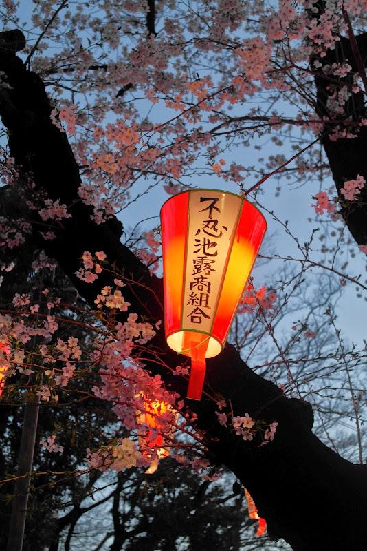 2014 Japan - Dag 1 - janita-SAM_5623.JPG