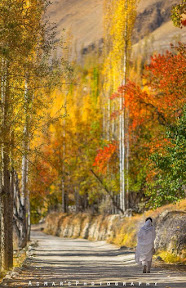 A Morning walk in Autumn, Hunza valley Gilgit Pakistan