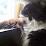 Jen Diringer's profile photo
