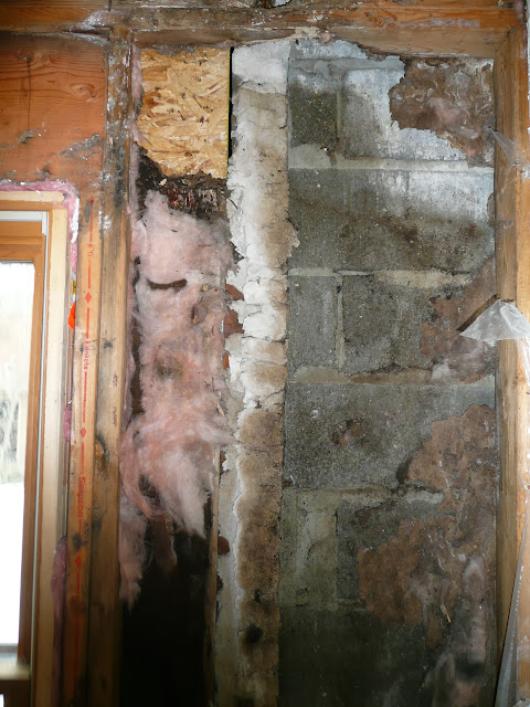 Carpentry - Water damage/after demo/ Cedarburg - P1000089.JPG