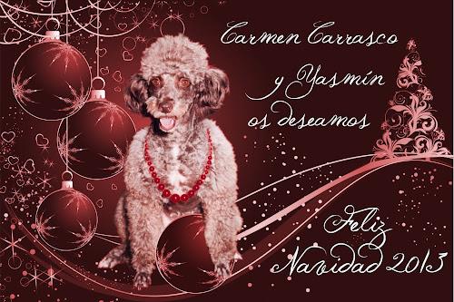 Carmen Carrasco y Yasmín, os deseamos una Feliz Navidad