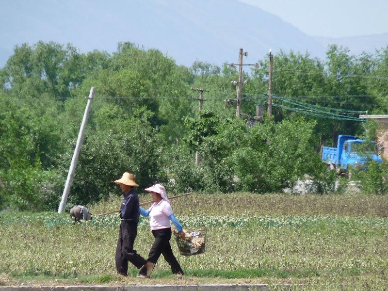 Chine. Yunnan Dali .En vélo vers le lac ERHAI - P1170735.JPG