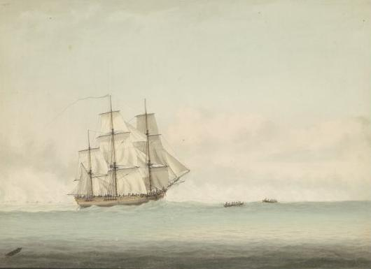 Marine archaeologists resolve mystery of the HMS Endeavour