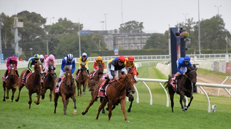 blue diamond_finish 3