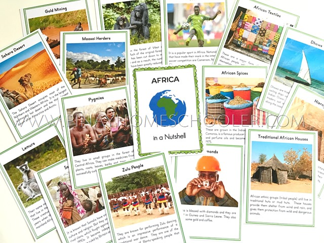 Africa in a Nutshell Fact Cards