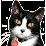 Purr-fect Companions Cat Sanctuary and Shelter's profile photo