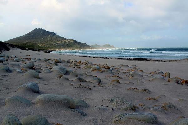 Ciottoli in spiaggia di simonpro