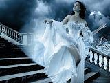 Bride Maiden