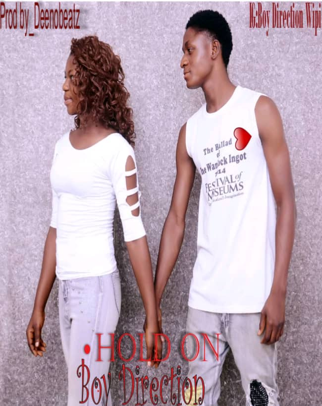 Download Music: Hold On by Direction WiPi