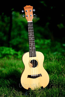 dan ukulele maerdisi brand