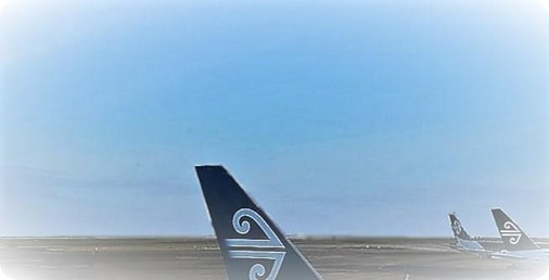 Air New Zealand flight status schedules and check in