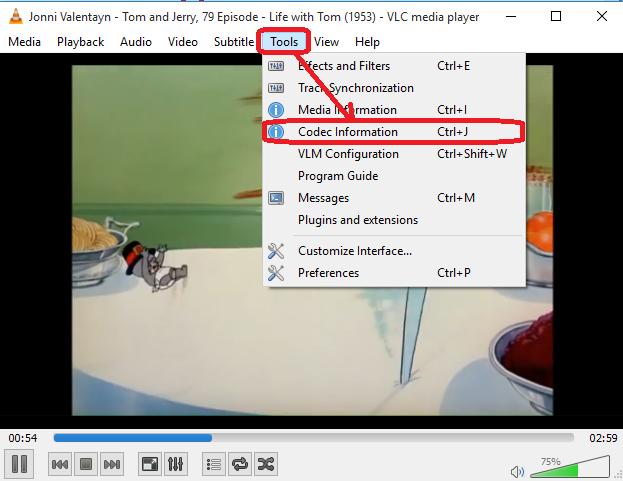VLC Codec Information