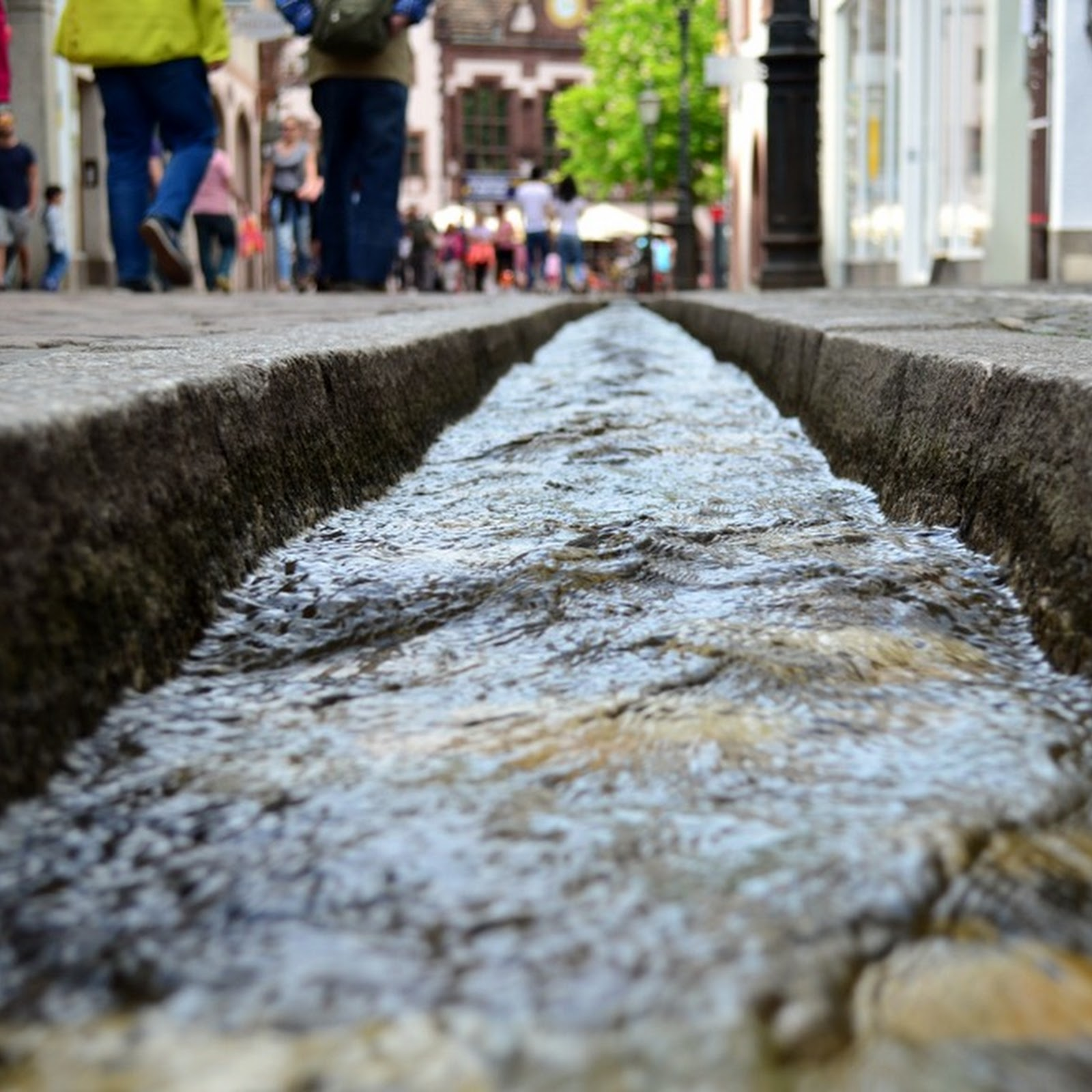 The Bächle of Freiburg: The Mediaeval Gutters That Became Recreational Hotspots
