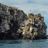 galapagos - Galapagos_FB_2-30.jpg
