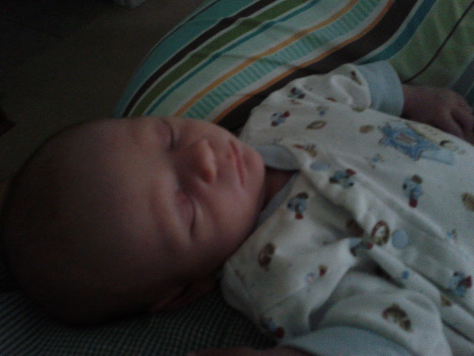 Meet Marshall! - IMG_20120604_190337.jpg