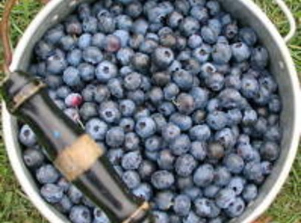 Blueberry Lemon Crisp Recipe
