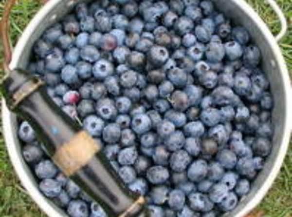 Blueberry Lemon Crisp