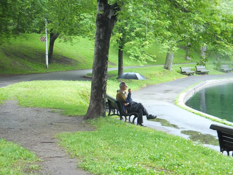 Parc de la Fontaine, Montréal, Canadá, Elisa N, Blog de Viajes